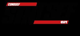 Logo SINTSEF CE