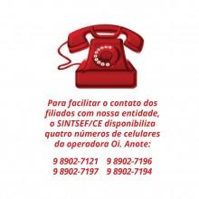 telefones 2